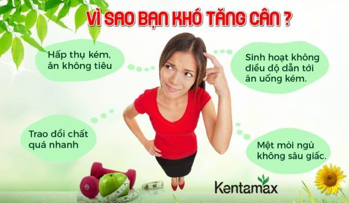 thành phần thuốc tăng cân Kentamax có thảo dược Liên nhục