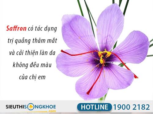 tác dụng nhụy hoa nghệ tây saffron việt nam