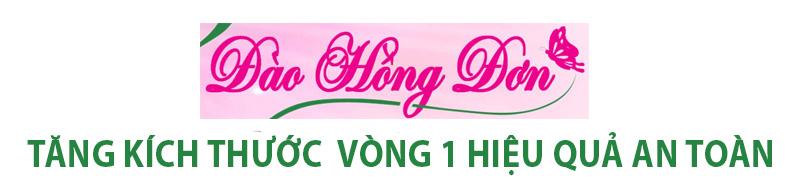 dao hong don TITLE