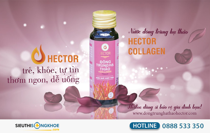 đông trùng hạ thảo hector collagen