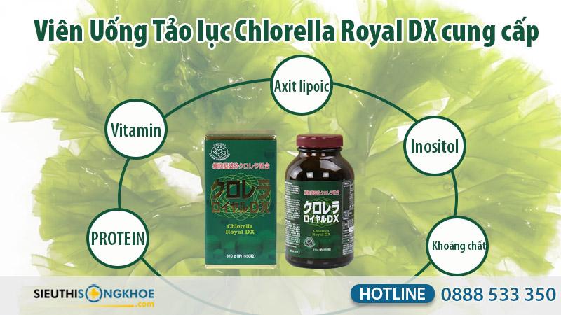 tao-luc-chlorella-royal-dx-2