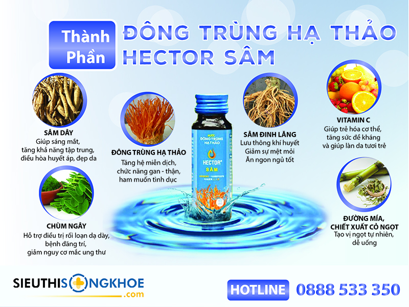 thanh-phan-nuoc-dong-trung-ha-thao-hector-sam
