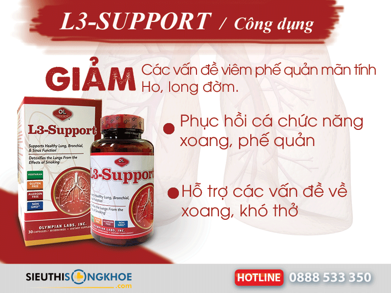 công dụng l3 support
