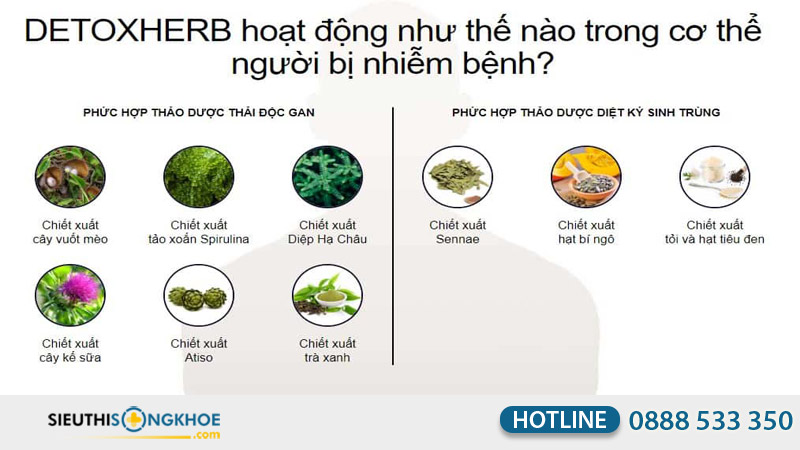 detox herb
