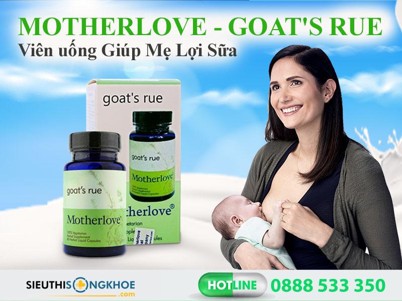 vien loi sua motherlove goat's rue