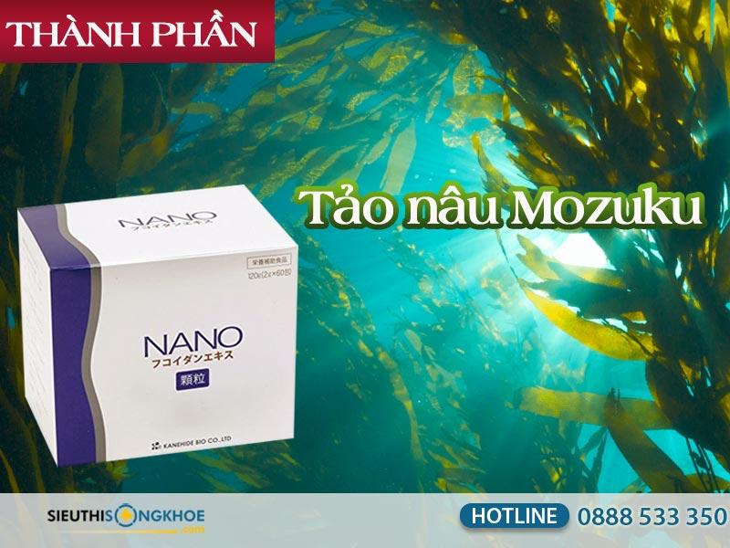 thanh phan bot ho tro dieu tri ung thu nano fucoidan extract granule