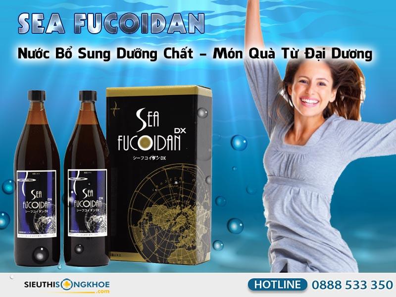 nuoc ho tro tro tri ung thu sea fucoidan dx