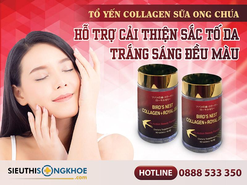 tổ yến collagen sữa ong chúa