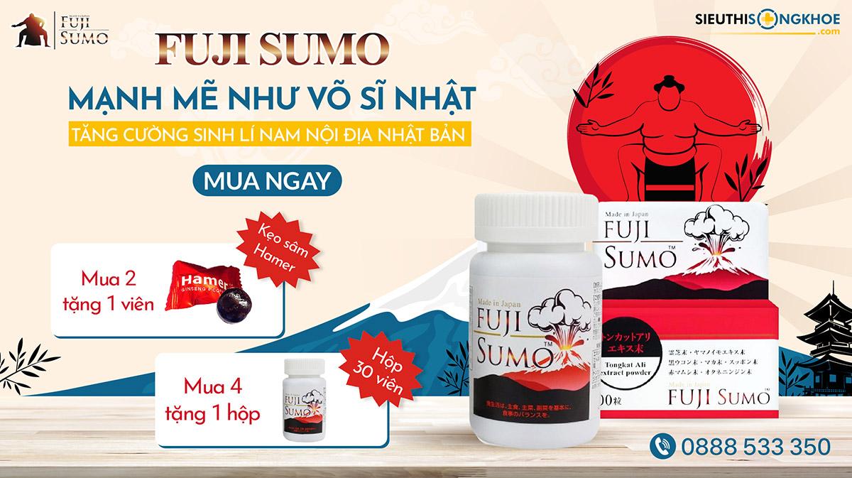 banner fuji sumo