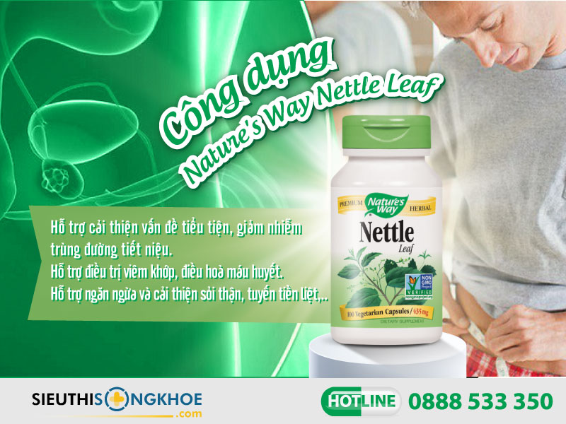 công dụng của nature's way nettle leaf